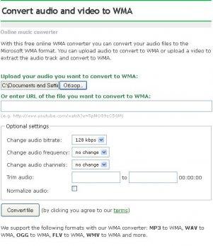 Настройка конвертера Online Convert