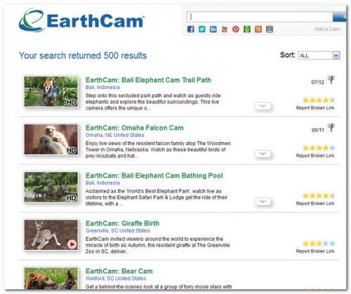 EarthCam и дикая природа