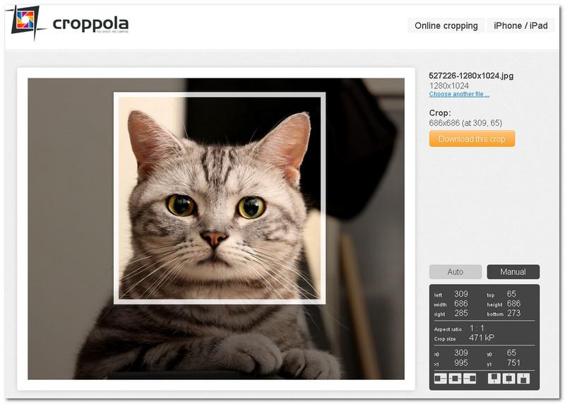 программа для обрезки фотографий онлайн - фото 4